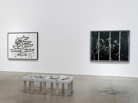 Installation view: Marina Pinsky, 303 Gallery, New York, 2018