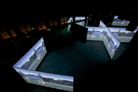 Doug Aitken, ALTERED EARTH, 2012, Arles