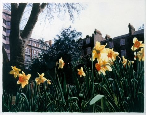 Tim Gardner, Untitled (Russell Square), 2003