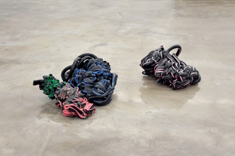Nina Canell, Shedding Sheaths (H)