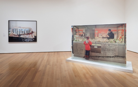 Marina Pinsky, Installation view: Installation view: Ocean of Images: New Photography 2015, MoMA, New York