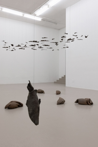 Installation view: Katinka Bock -Radio / Tomorrow's Sculpture