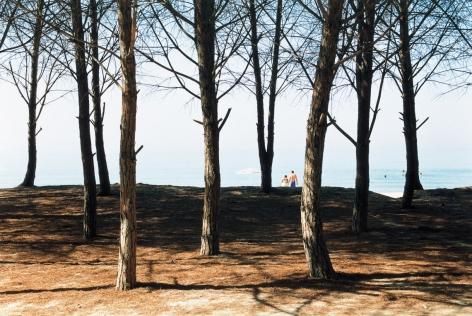 Pinenstrand, 2005