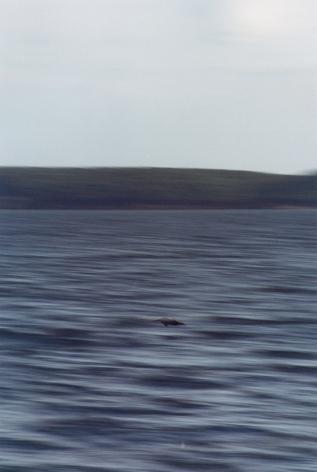 Seestück, Frank Mädler, 2000