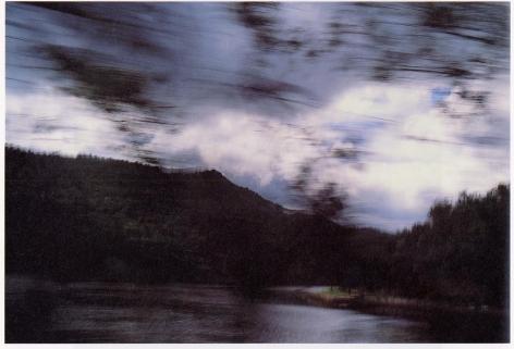Bush Landscape, Australia, Nan Goldin, 1997
