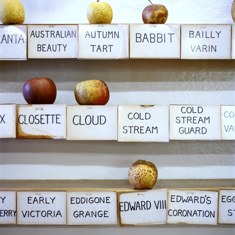 Simone Rosenbauer Apple & Heritage Museum