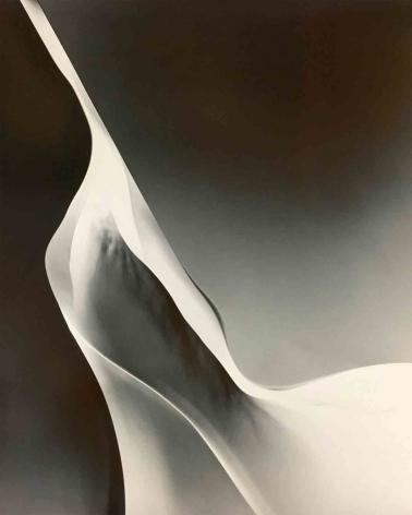 Daniel Ranalli Photogram Nº7, 1979