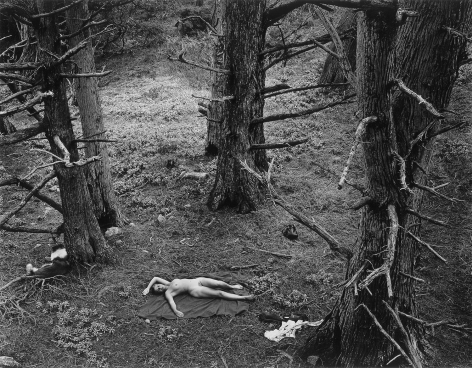 Woman and Dog in Forest, 1953 gelatin silver print