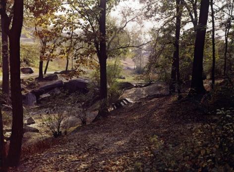 Evelyn Hofer Central Park, 1965