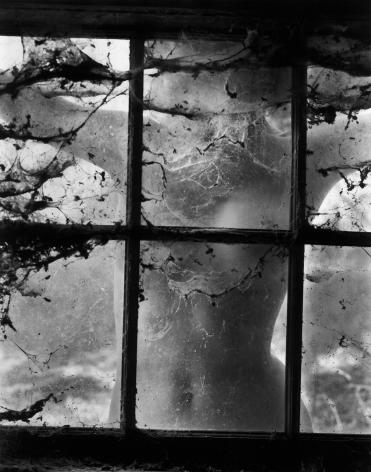 Nude behind Cobwebbed Window,1955