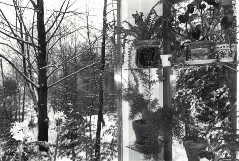 Lee Friedlander, Putney Vermont, 1972