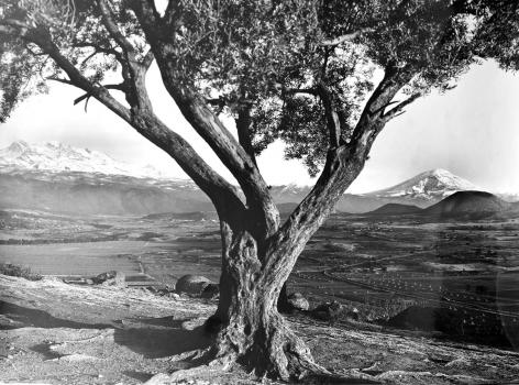 Volcanes / Armando Salas Portugal