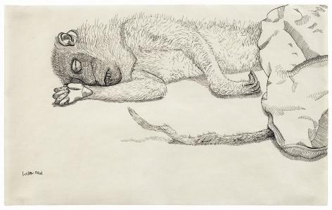 Lucian Freud, Dead Monkey