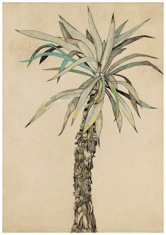 Lucian Freud, Palm Tree