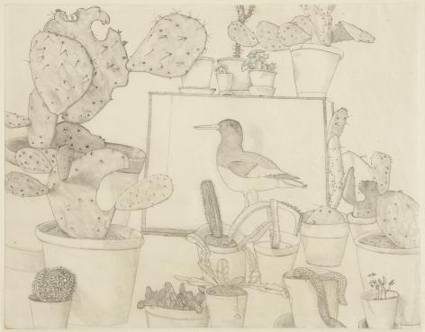 Lucian Freud, Cacti and Stuffed Bird
