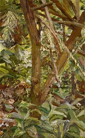Lucian Freud, Small Garden