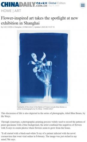 Flower-inspired art takes the spotlight at new exhibition in Shanghai