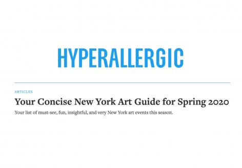 Hyperallergic | Your Concise New York Art Guide for Spring 2020