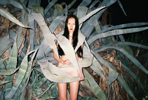 Dazed Digital I Ren Hang shoots nudes and nature in Athens