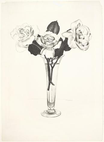 Charles Sheeler,Roses, 1924.