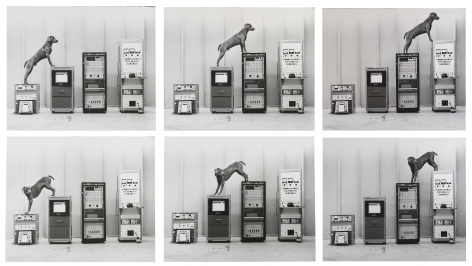 William Wegman, Ray-O-Vac, 1973.