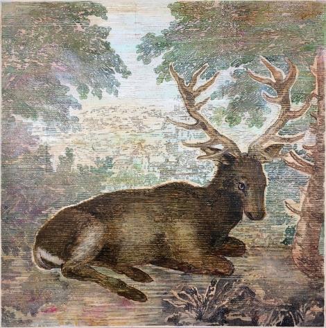 Durer's+Deer,+2018