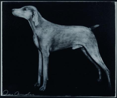 ANDOE-Joe_Weimaraner (Blue on Black)_silkscreen on canvas_50x60 inches