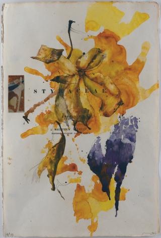 NUGENT-Bob_Flora Brasiliensis #189_18.5x12.5_s
