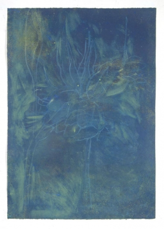 DAVIDOFF-Suzi_Flowers_for_VSW_monotype
