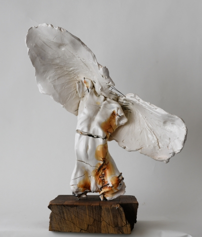 DAHL-Carl_Large male angel_s