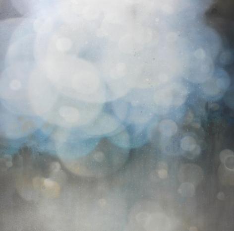 SHIFFLET-Jenn_Transparency_48x48_8300