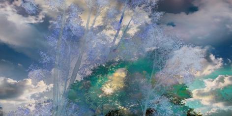 08_JPAXTON_Blue-Eucalyptus_RT10_36x72_s