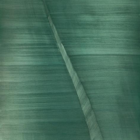 OSUNA-Miguel_Scarab_60x60