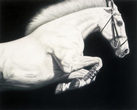 02_PICCILLO-Joseph_Horse No13_charcoal and graphite on canvas_48x60_Ws