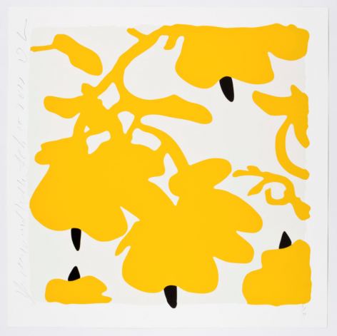 SULTAN-Donald_Yellow and White, Feb 10, 2017_color silkscreen with over-printed flocking on museum board_32x32 inches