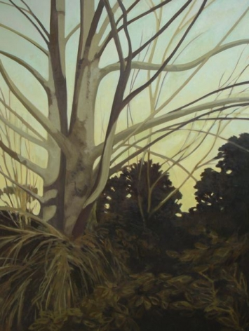 Strasburg-Nicole_Sycamore_oil on panel_48x36
