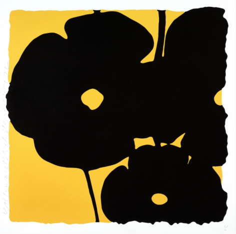 SULTAN-Donald_Yellow and Black, Nov 6, 2015_color silkscreen with enamel inks and flocking on museum board_46x46 inches