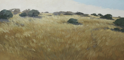 STRASBURG-Nicole_Coastal Grasses_18x36