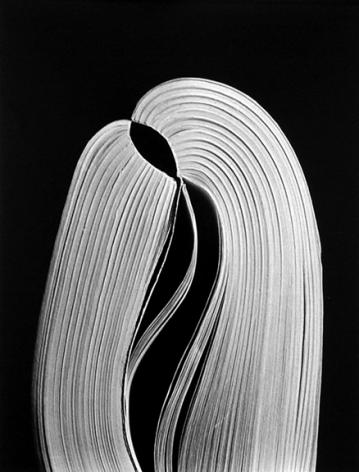 Chicago (88-4-227), 1988, 11 x 14 or 16 x 20 inch gelatin silver print