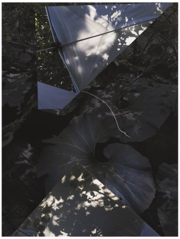 GD19_314,2019. Unique collaged archival pigment print with graphite, 29 x 22 inches.