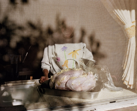 Thanksgiving, from the series Pictures form Home, 1985, 20 x 24 inch archival pigment print please inquire for additional sizes