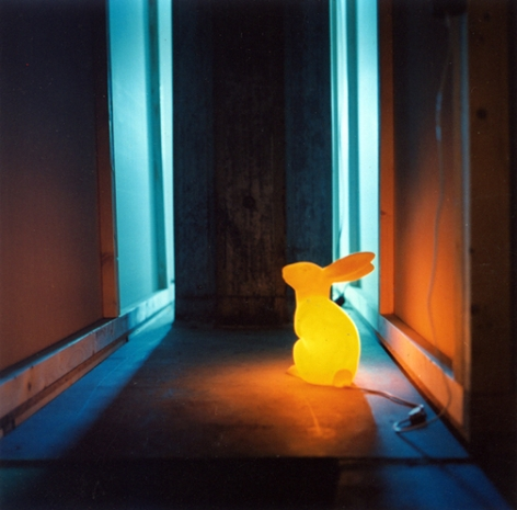Bunny,2003, chromogenic print, 20 x 20 inches, edition of 10, 50 x 50 inches, edition of 6