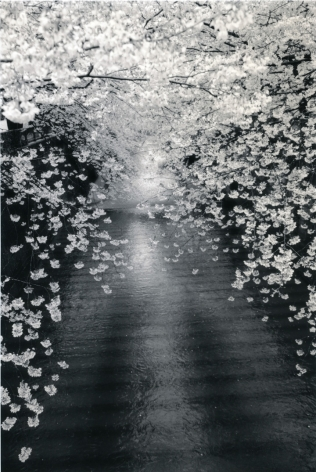 Untitled #1534 from the series Kawa=Flow, 10.25 x 6.75 inch gelatin silver print with mixed media