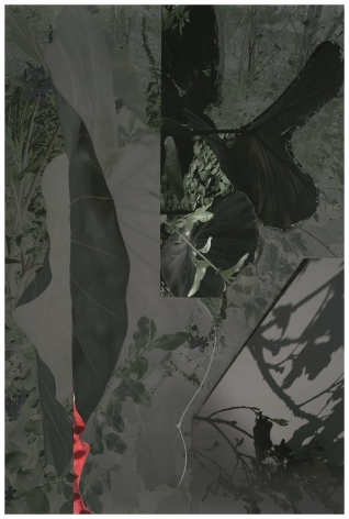 GD19_289,2019. Unique collaged archival pigment print with graphite, 33 x 22 inches.