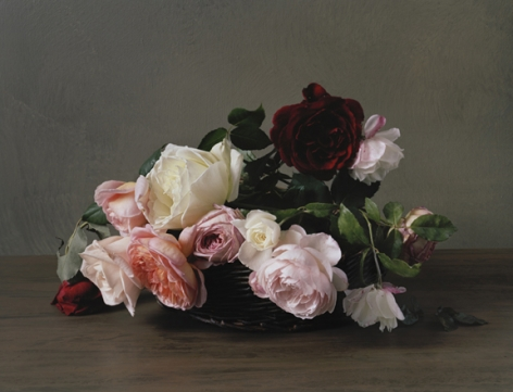 Photograph by Sharon Core titled 1890 from the series 1606-1907 of a floral still life arranged in the style of a classical painting