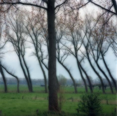 Damme, Belgium (4-04-8c-11),2004,19 x 19,28 x 28, or 38 x 38 incharchival pigment print