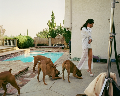 Boxers, Mission Hills, from the series The Valley, 1999. Archival pigment print, 50 x 60 inches. Please inquire for additional sizes.