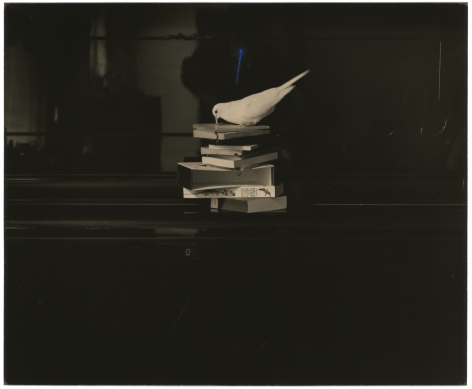 Untitled #25from the seriesA Box of Ku, 6 x 4.5 inch gelatin silver print and mixed media