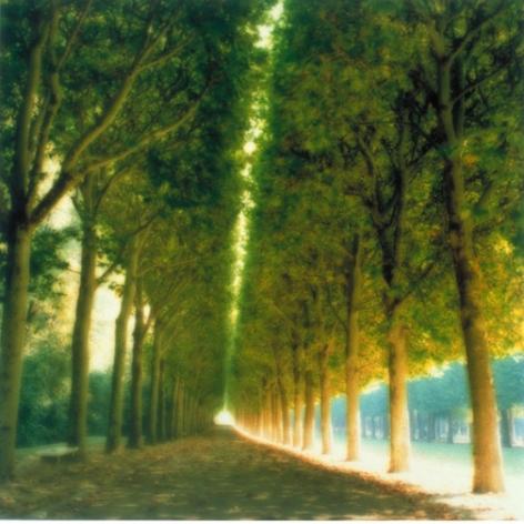Parc de Sceaux, Paris, France (10-97-7c-8), 2004,19 x 19,28 x 28,or 38 x 38 incharchival pigment print