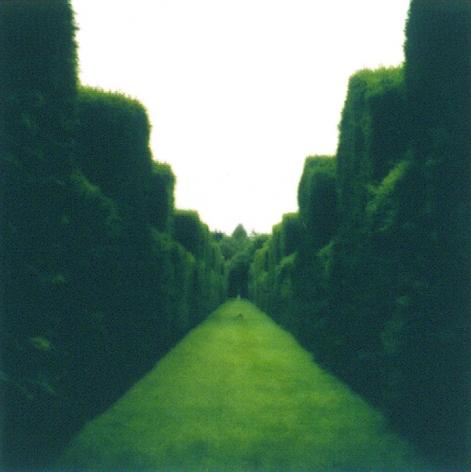 Misderden Park, England (7-00-1c-5-c),2000,19 x 19,28 x 28,or 38 x 38 incharchival pigment print